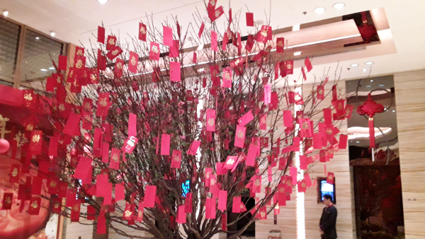 Hongbao on a tree to bring wealth for Chinese New Year during the Spring Festival