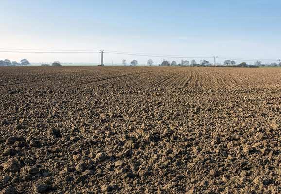 Barren field of scarcity