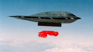 Transsexual B2 Stealth Bomber